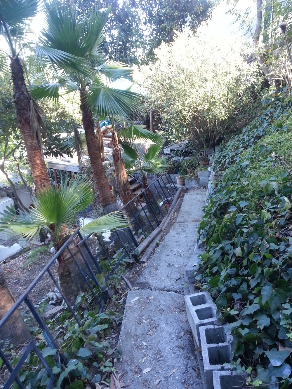 Spa removal from a narrow access back yard 4